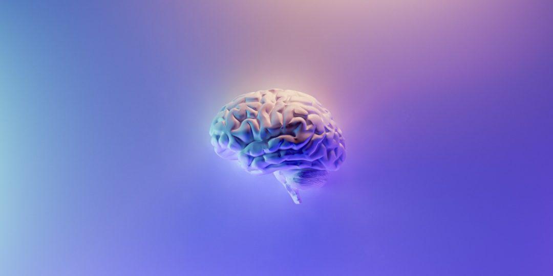 Formation sur le développement de son intelligence émotionnelle